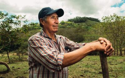 Impatto del Covid sui Produttori